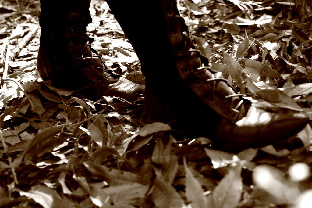 木枯らしの中