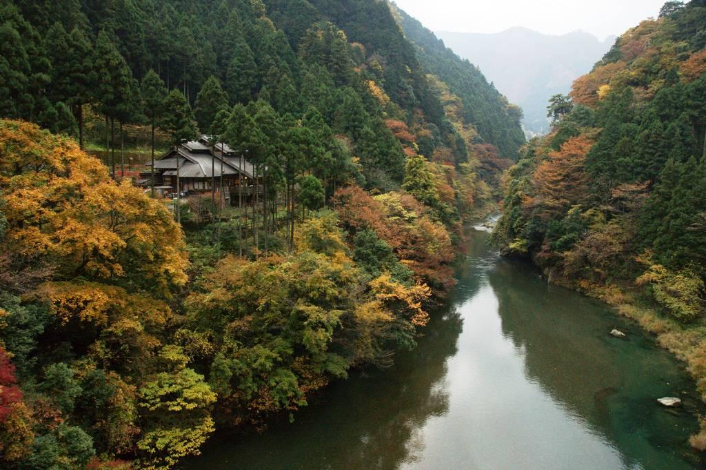 秋の多摩川上流