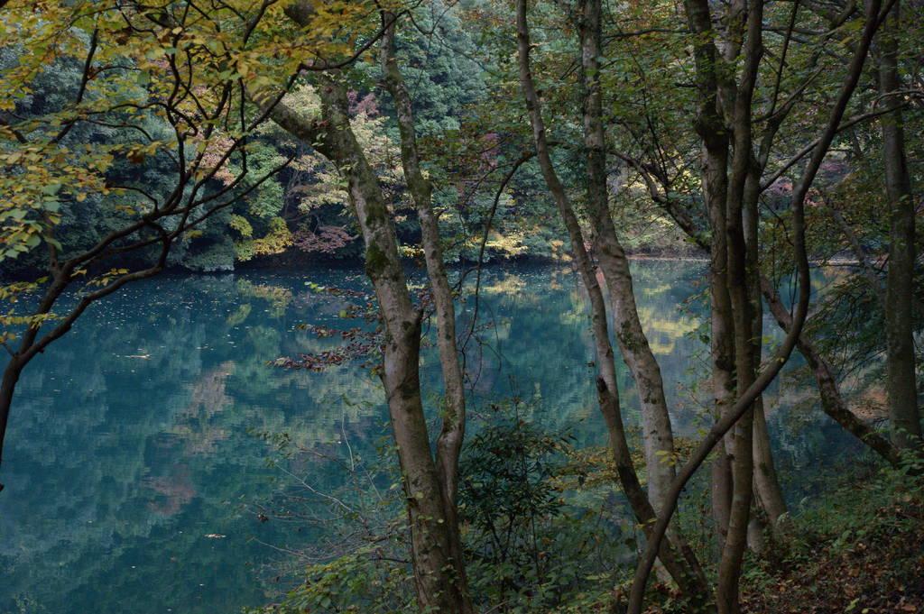秋の白丸湖