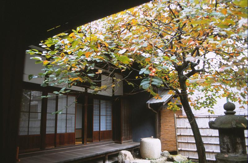 旧岩崎邸庭園(2)