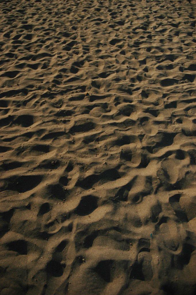 日本海の砂浜