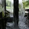 もすごい量の湧水
