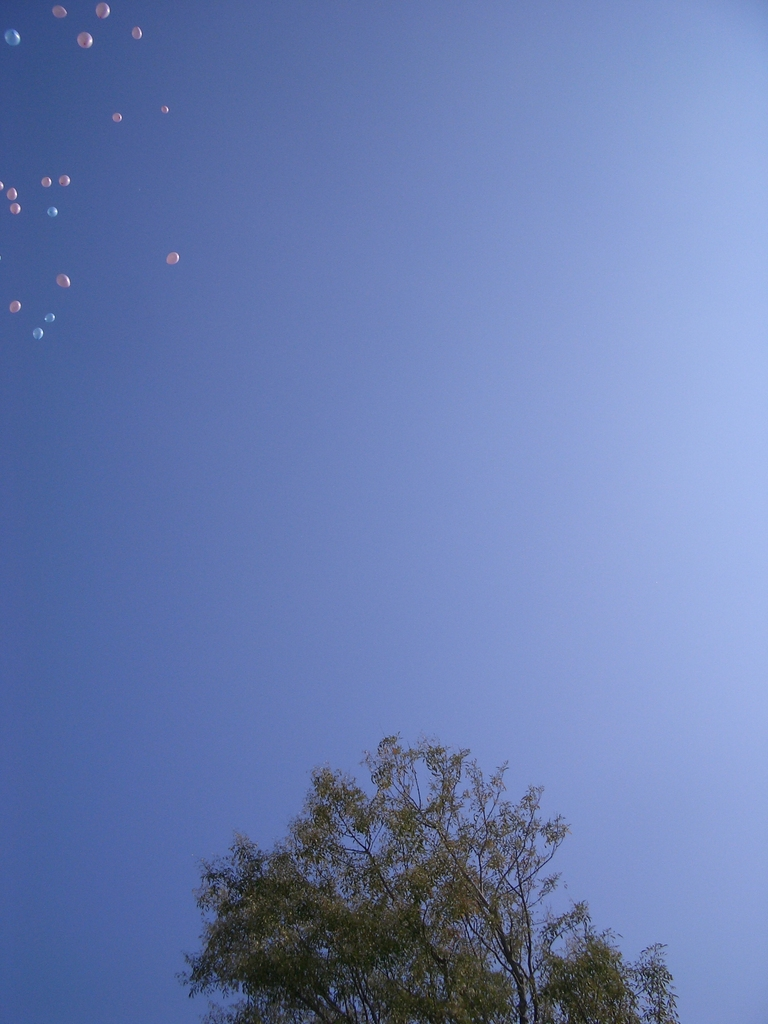 Happy Wedding Ballon1