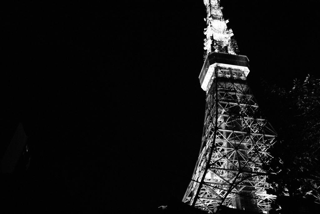 monochrome tokyo tower