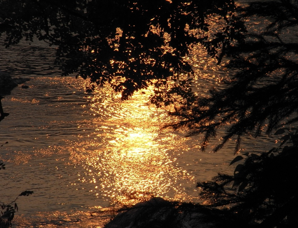 夕陽に映える水面