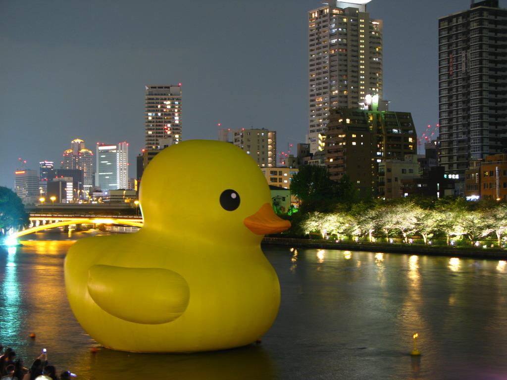 水都大阪に浮かぶあひる