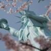 自由の女神と桜
