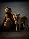 老人と老人を守る犬