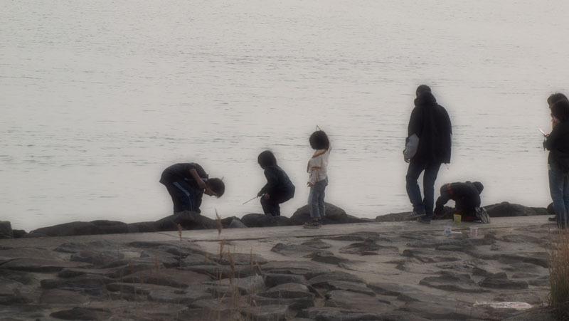海辺の午後