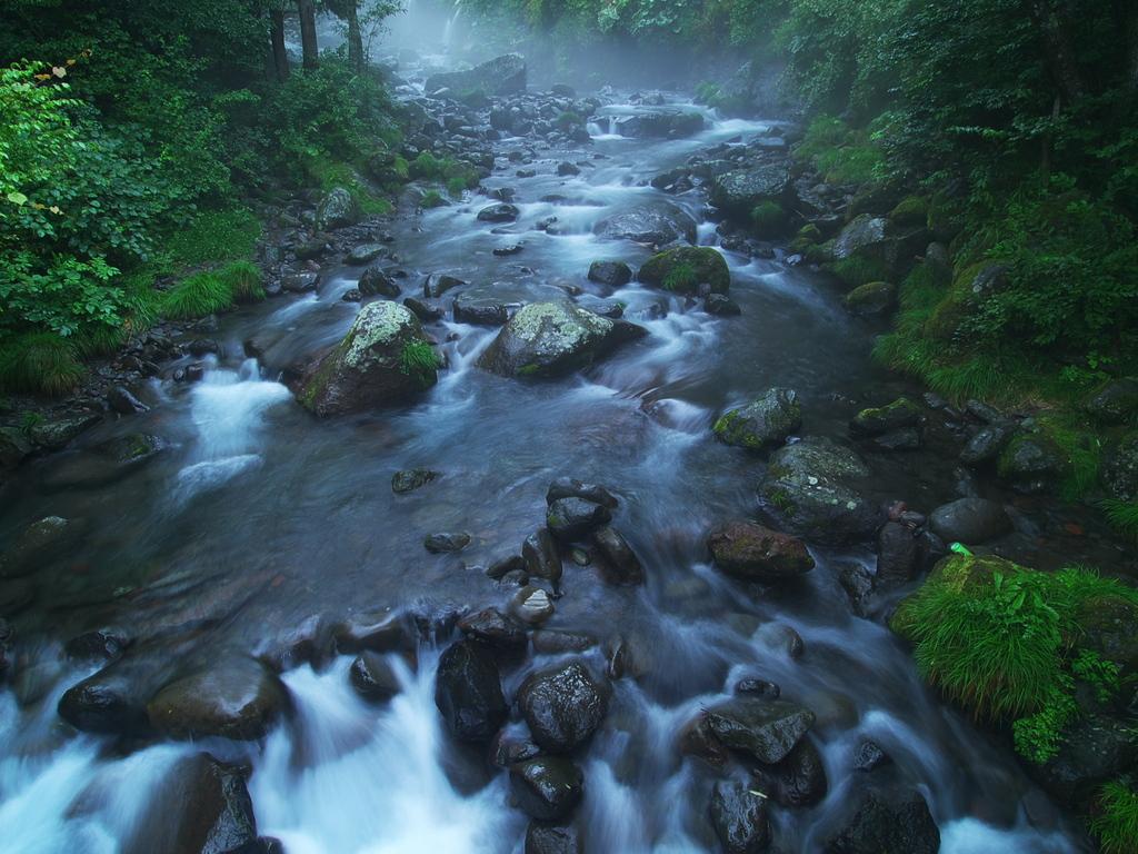 霧雨川俣川渓
