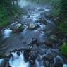 OLYMPUS E-1で撮影した風景(霧雨川俣川渓 )の写真(画像)