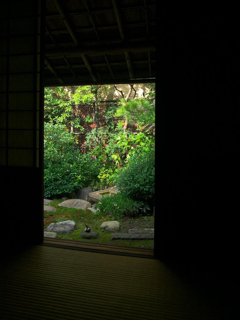 お庭・陰影
