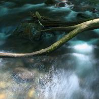 OLYMPUS E-1で撮影した風景(輝く横川の流れ)の写真(画像)