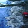 NIKON E950で撮影した風景(渓流を流れる・・)の写真(画像)