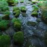 OLYMPUS E-3で撮影した風景(吉田川にて)の写真(画像)