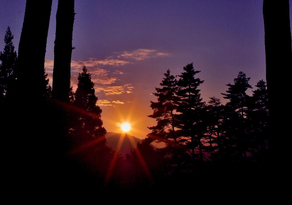 初冬の夕日