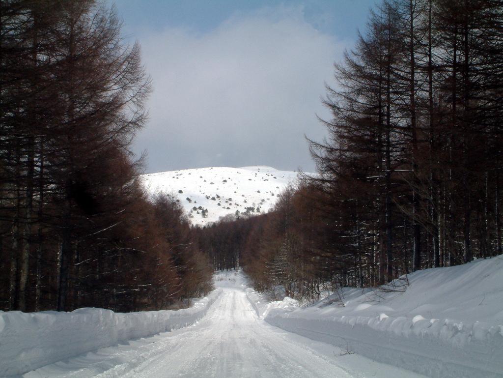雪道を急ぐ