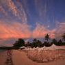 CANON Canon EOS 5Dで撮影した風景(ピンクの雲)の写真(画像)