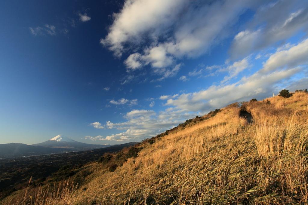富士と小麦色