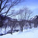 CANON Canon EOS 5D Mark IIで撮影した風景(冬の山道)の写真(画像)