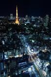 東京夜景・縦
