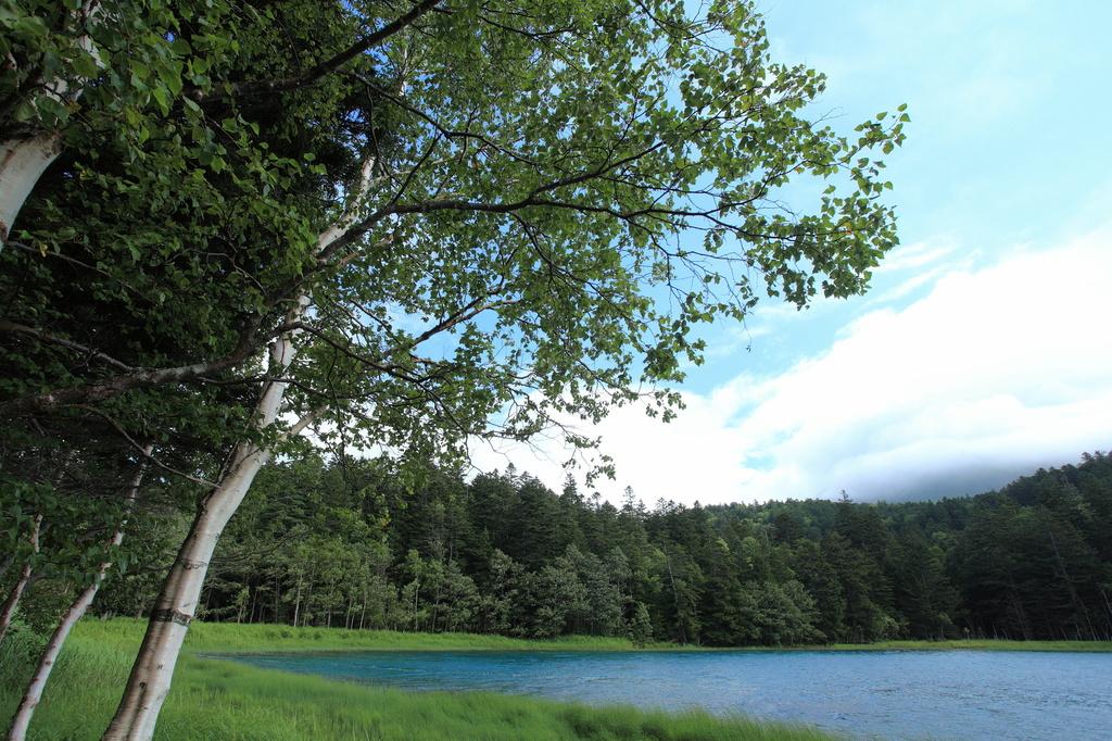 神秘の湖で・・・(2)