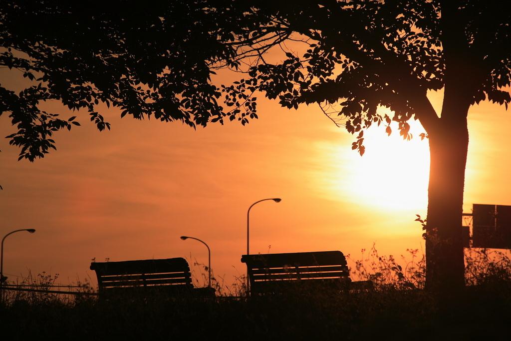 黄昏をベンチで