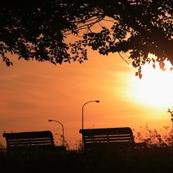 CANON Canon EOS 5Dで撮影した風景(黄昏をベンチで)の写真(画像)