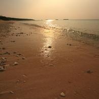 CANON Canon EOS 5Dで撮影した風景(物寂しげな海岸)の写真(画像)