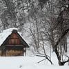 冬の佇まい