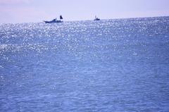 海 つり船