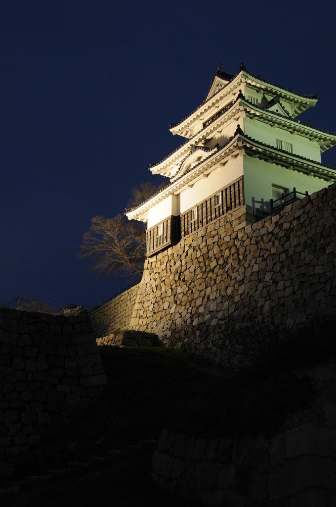 丸亀城 ライトアップ