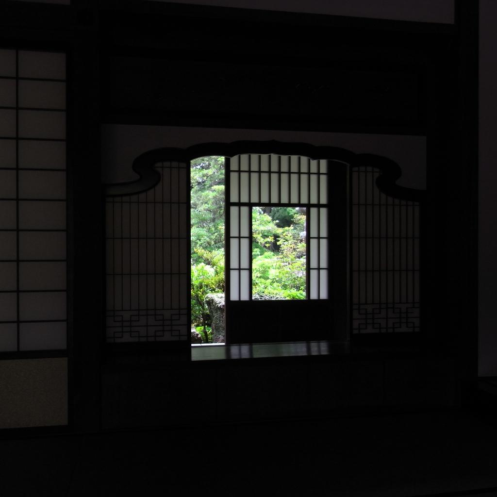 photo36219