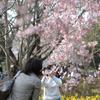 2008-04-05-15-21
