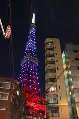 青ざめる東京タワー_4645