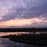 相模川の夕日2