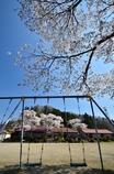 なつかしの学び舎 上岡小学校⑤大きな桜の木の下で