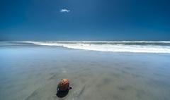 台風一過の浜辺