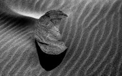 砂に埋もれる時間