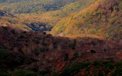 谷あいに残る秋