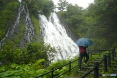 滝を見に行く