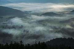 朝霧の面紗