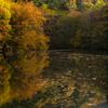 紅葉の真澄ヶ池