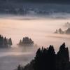 foggy wave