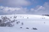 美ヶ原の冬4