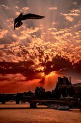 パリの旭日旗