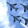 大空を飛ぶ青い鳥