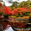 水面に映る紅葉谷