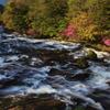 朝の竜頭の滝