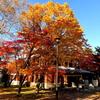 つきさっぷ郷土資料館の秋 再投稿